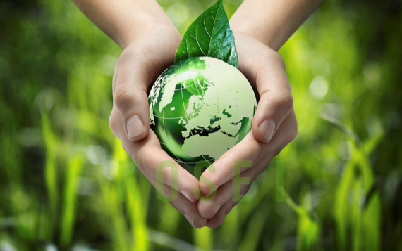 Sử dụng đồ tiêu hao thân thiện môi trường trong khách sạn có tốt không?