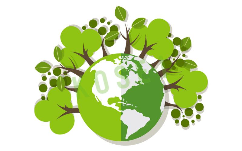 eco friendly toothbrush thân thiện môi trường