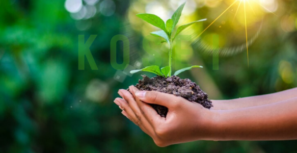 Eco Friendly – Sản phẩm thân thiện môi trường trong thời đại công nghệ 4.0