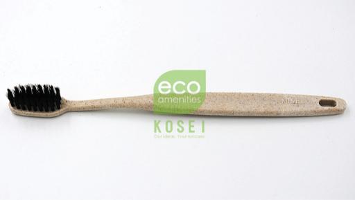 ban-chai-danh-rang-eco-friendly-toothbrush