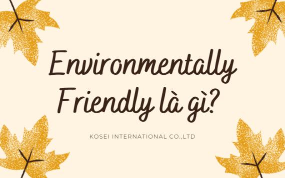 Nghĩa tiếng Việt của Enviromentally friendly là gì? – Cách sử dụng như thế nào?